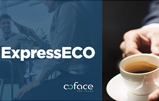expresseco by coface, our economic previsions for 2021