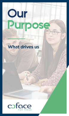 Our Purpose: what drive us